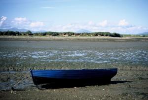 Sel1992-003